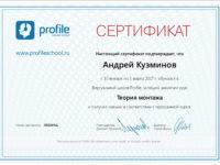 Сертификат - Теория Монтажа